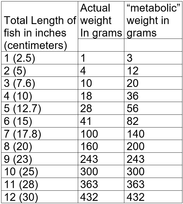 7.3.-Weight-of-a-fish.jpg